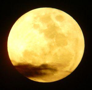 209140_yellow_moon